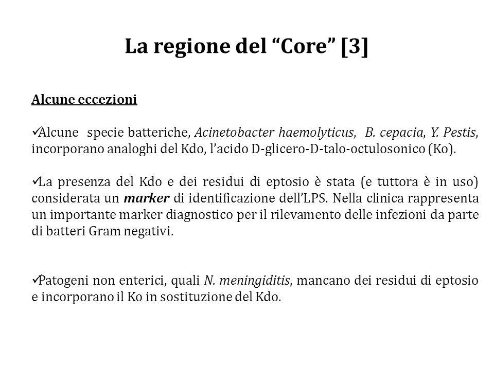 La regione del Core [3]